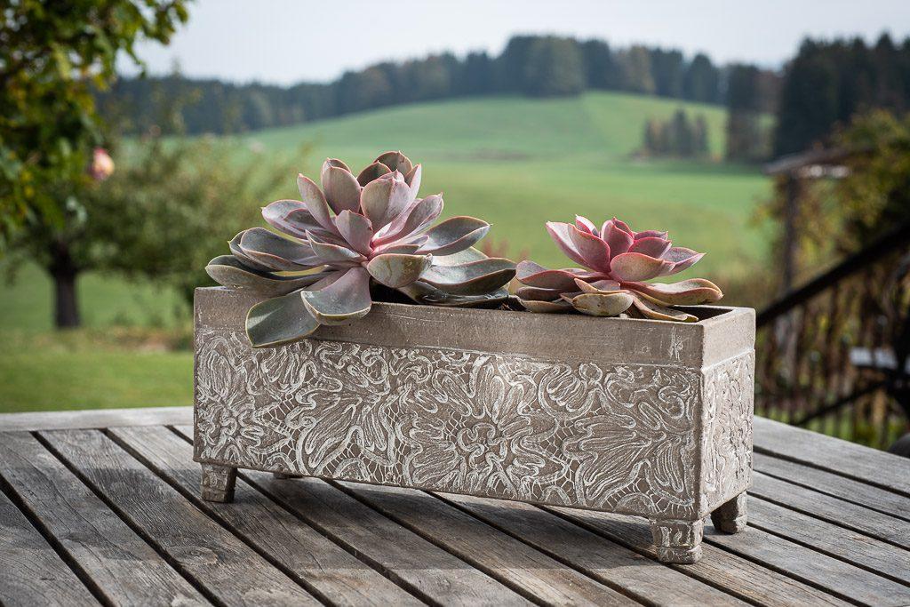 Steunzeug Blumenkasten Keramik Werkstatt Judith Smetana Lengenwang Luttenried im Allgäu Ostallgäu bei Füssen